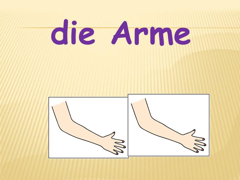 die Arme