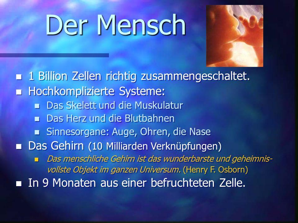 Der Mensch n 1 Billion Zellen richtig zusammengeschaltet.