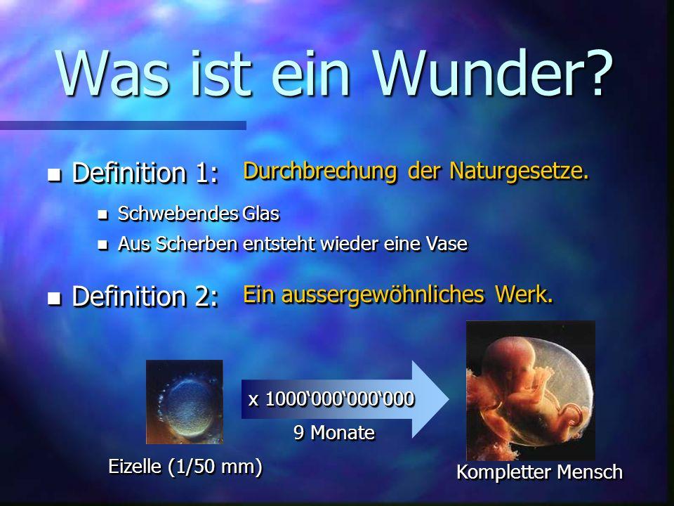 Geordneter Makrokosmos n Abstand Erde- Sonne 2% Änderung Leben unmöglich auf der Erde n Abstand Mond-Erde grössergrösserkleinerkleiner Instabile Erdachse (Mars) Gezeiten überfluten Kontinente n Rotations- geschwindigkeit Katastrophale Winde (Jupiter, 10h) grössergrösserkleinerkleiner Pflanzen erfrieren/verbrennen n Sauerstoffgehalt der Atmosphäre (21%) 25%25% Spontane Feuer 15%15% Atmende Lebewesen sterben