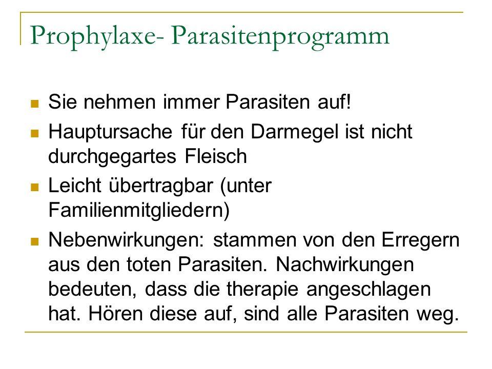 Prophylaxe- Parasitenprogramm Sie nehmen immer Parasiten auf! Hauptursache für den Darmegel ist nicht durchgegartes Fleisch Leicht übertragbar (unter