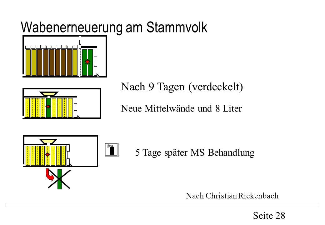 Seite 28 Wabenerneuerung am Stammvolk Nach 9 Tagen (verdeckelt) Neue Mittelwände und 8 Liter 5 Tage später MS Behandlung Nach Christian Rickenbach