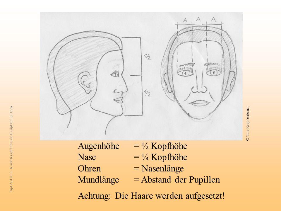© Tina Krapfenbauer Augenhöhe = ½ Kopfhöhe Nase = ¼ Kopfhöhe Ohren = Nasenlänge Mundlänge = Abstand der Pupillen Achtung: Die Haare werden aufgesetzt.