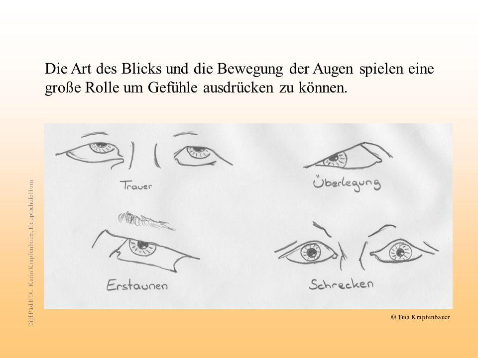 Die Art des Blicks und die Bewegung der Augen spielen eine große Rolle um Gefühle ausdrücken zu können.
