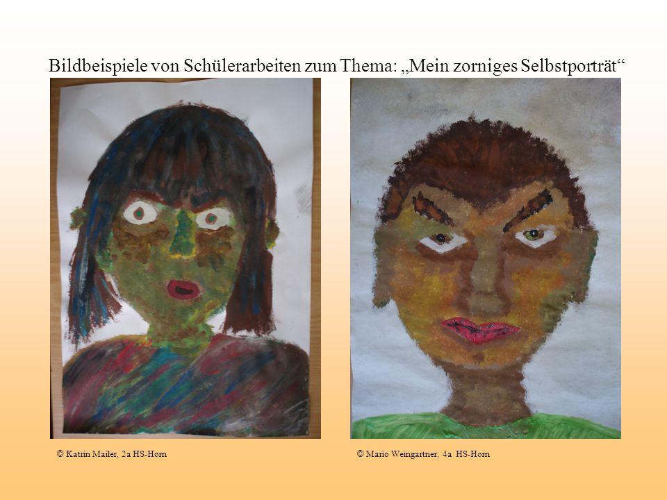 Bildbeispiele von Schülerarbeiten zum Thema: Mein zorniges Selbstporträt © Katrin Mailer, 2a HS-Horn © Mario Weingartner, 4a HS-Horn