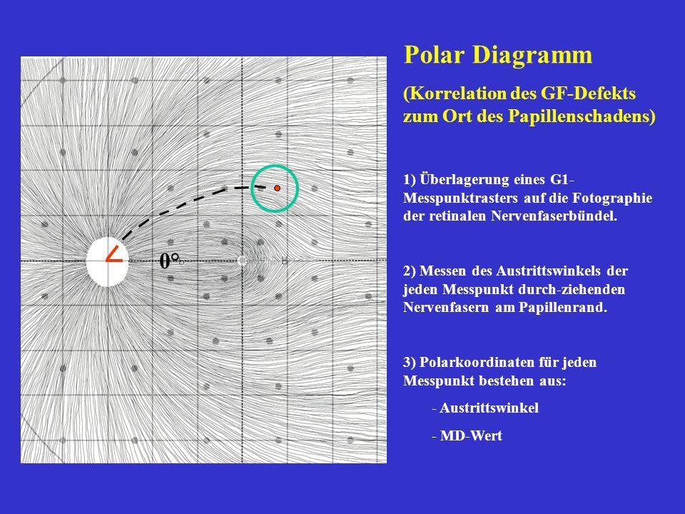 Polar Diagramm (Korrelation des GF-Defekts zum Ort des Papillenschadens) 1) Überlagerung eines G1- Messpunktrasters auf die Fotographie der retinalen