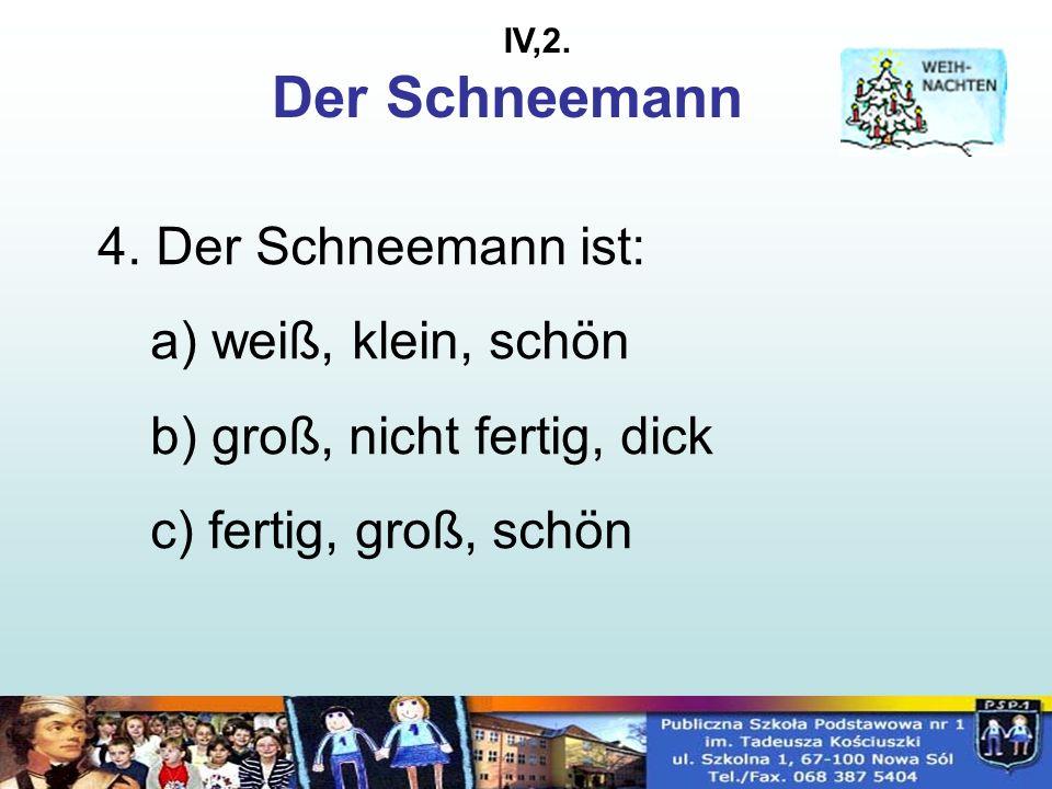 Der Schneemann 4.