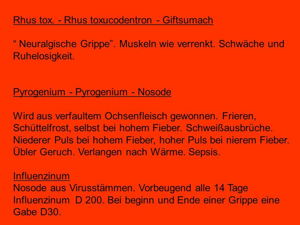 Rhus tox.- Rhus toxucodentron - Giftsumach Neuralgische Grippe.