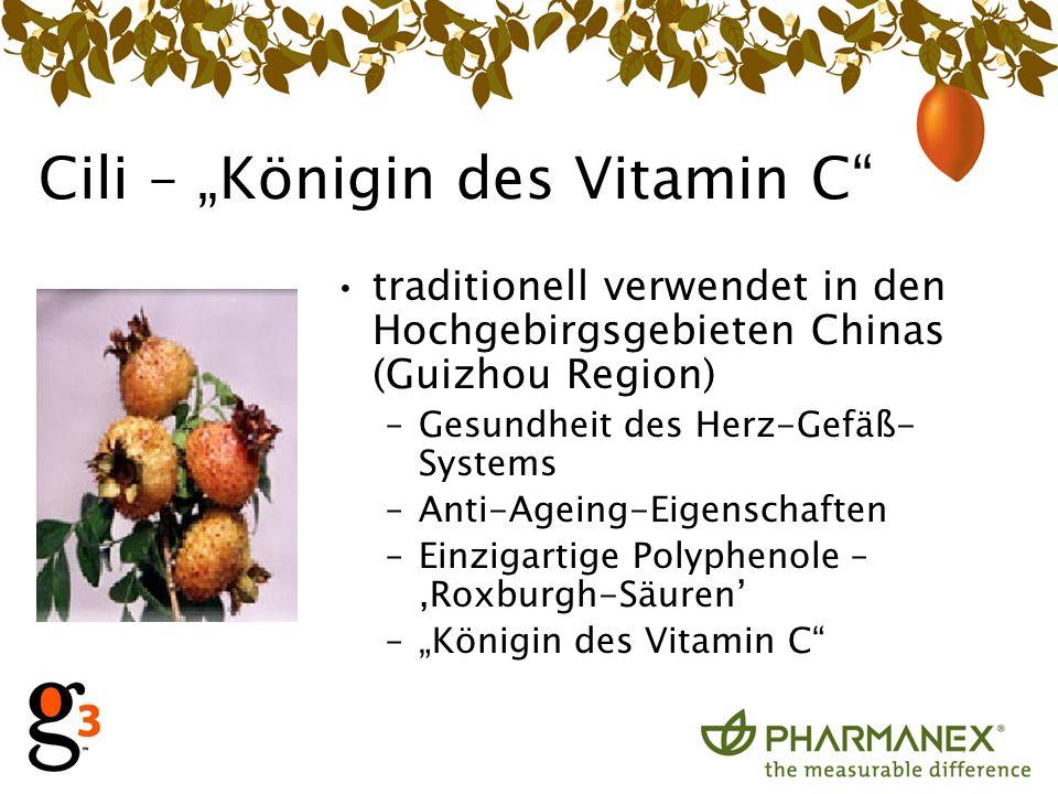 Cili – Königin des Vitamin C traditionell verwendet in den Hochgebirgsgebieten Chinas (Guizhou Region) –Gesundheit des Herz-Gefäß- Systems –Anti-Ageing-Eigenschaften –Einzigartige Polyphenole – Roxburgh-Säuren –Königin des Vitamin C