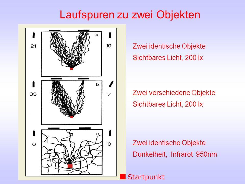 Zwei identische Objekte Sichtbares Licht, 200 lx Zwei verschiedene Objekte Sichtbares Licht, 200 lx Zwei identische Objekte Dunkelheit, Infrarot 950nm Laufspuren zu zwei Objekten Startpunkt
