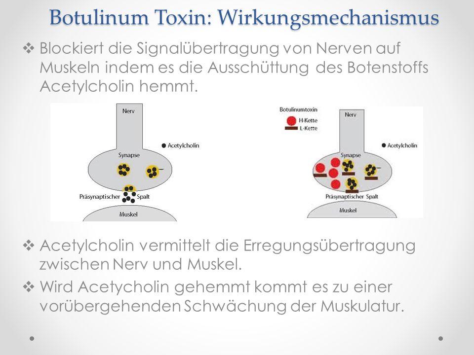 Botulinum Toxin: Wirkungsmechanismus Blockiert die Signalübertragung von Nerven auf Muskeln indem es die Ausschüttung des Botenstoffs Acetylcholin hem