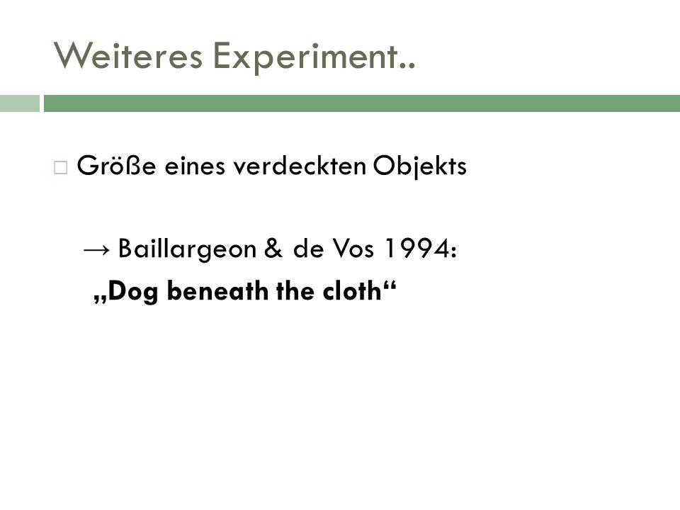 Weiteres Experiment.. Größe eines verdeckten Objekts Baillargeon & de Vos 1994: Dog beneath the cloth