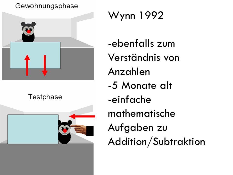 Wynn 1992 -ebenfalls zum Verständnis von Anzahlen -5 Monate alt -einfache mathematische Aufgaben zu Addition/Subtraktion
