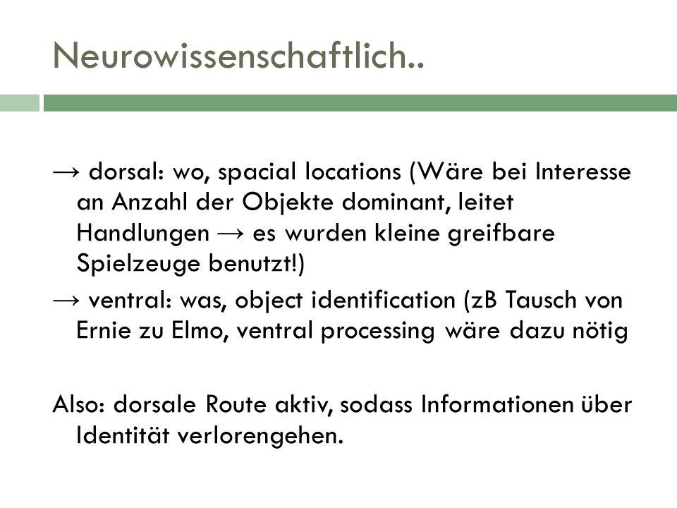 Neurowissenschaftlich.. dorsal: wo, spacial locations (Wäre bei Interesse an Anzahl der Objekte dominant, leitet Handlungen es wurden kleine greifbare