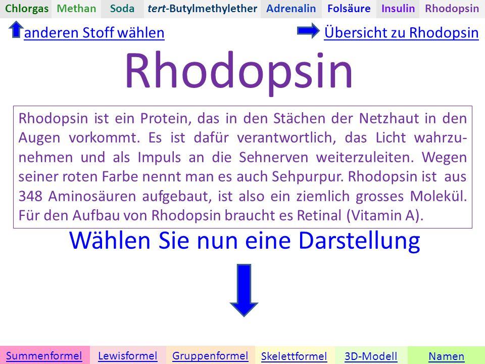 Namen Übersicht zu Rhodopsin 3D-ModellSkelettformel GruppenformelSummenformelLewisformel anderen Stoff wählen Rhodopsin tert-ButylmethyletherChlorgasAdrenalinInsulinRhodopsinFolsäureMethanSoda Rhodopsin ist ein Protein, das in den Stächen der Netzhaut in den Augen vorkommt.