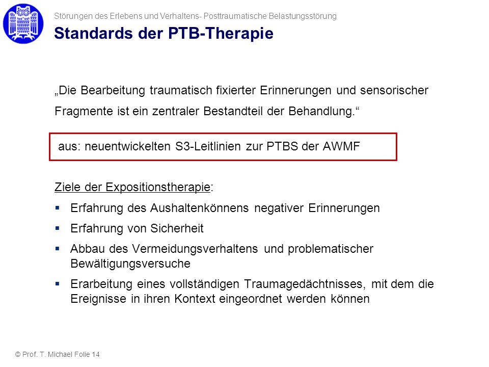 Standards der PTB-Therapie Die Bearbeitung traumatisch fixierter Erinnerungen und sensorischer Fragmente ist ein zentraler Bestandteil der Behandlung.