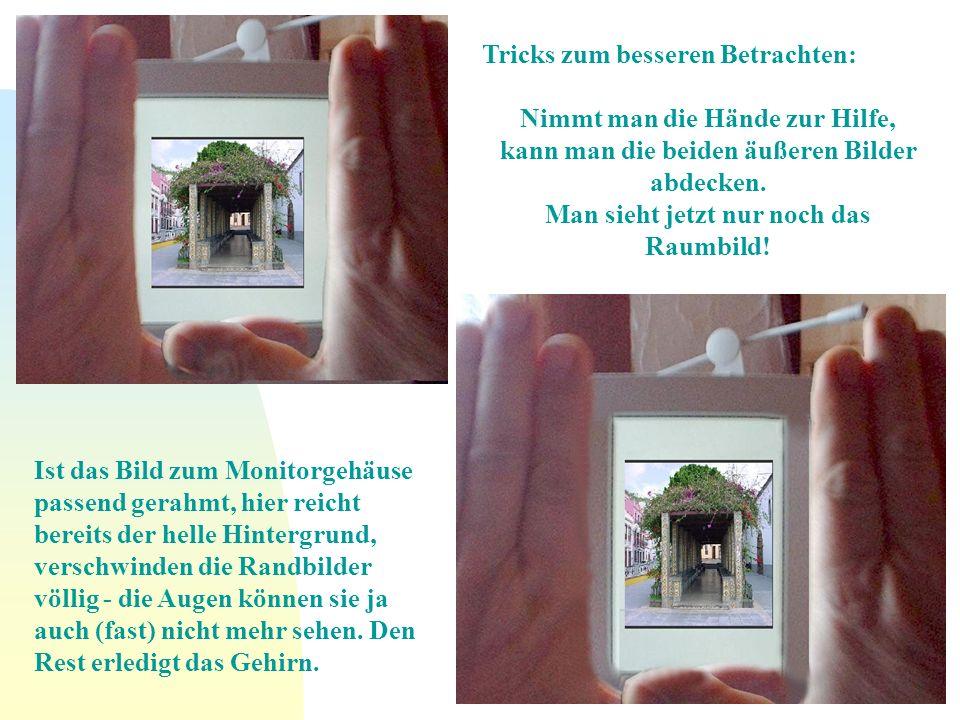 Nimmt man die Hände zur Hilfe, kann man die beiden äußeren Bilder abdecken. Man sieht jetzt nur noch das Raumbild! Ist das Bild zum Monitorgehäuse pas