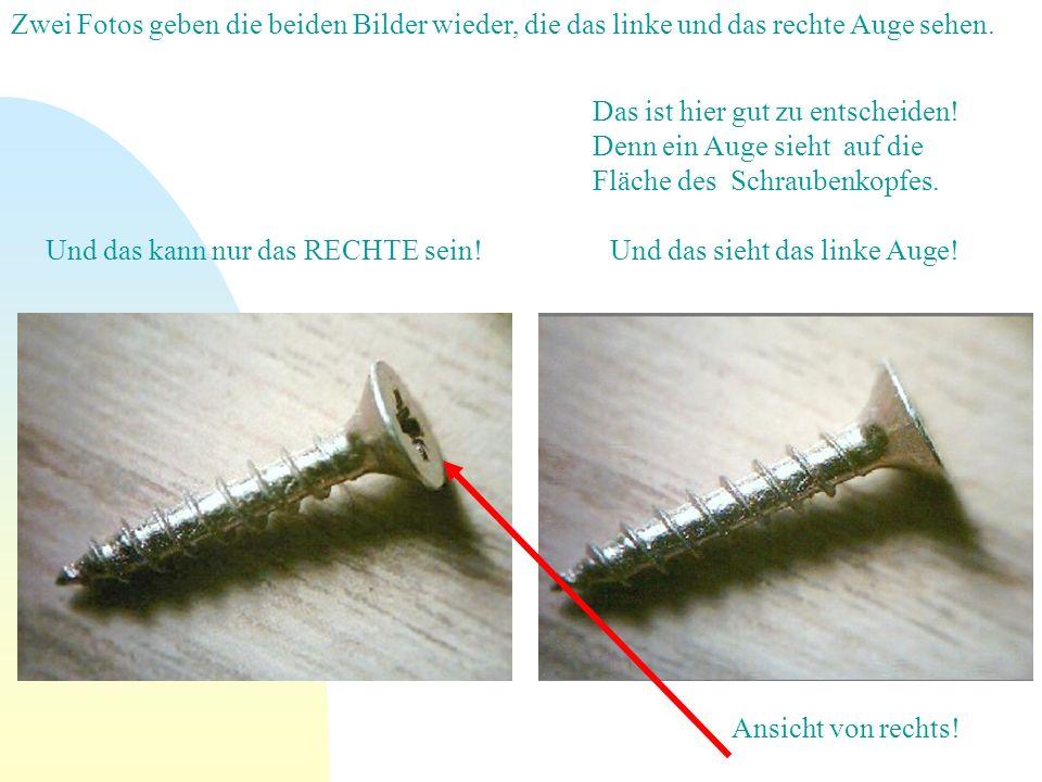 Zwei Fotos geben die beiden Bilder wieder, die das linke und das rechte Auge sehen. Das ist hier gut zu entscheiden! Denn ein Auge sieht auf die Fläch