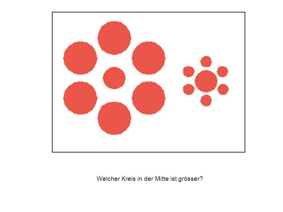 Welcher Kreis in der Mitte ist grösser?