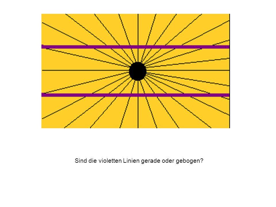 Sind die violetten Linien gerade oder gebogen?