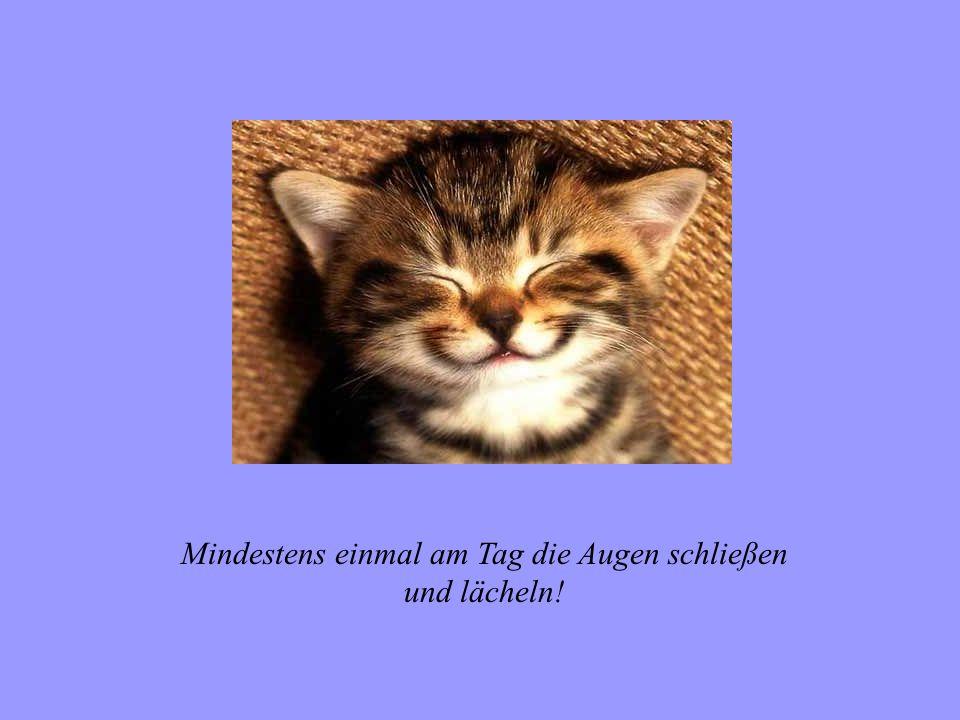Mindestens einmal am Tag die Augen schließen und lächeln!