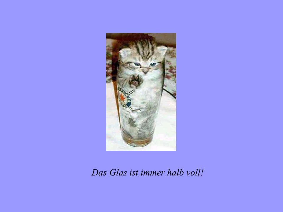 Das Glas ist immer halb voll!