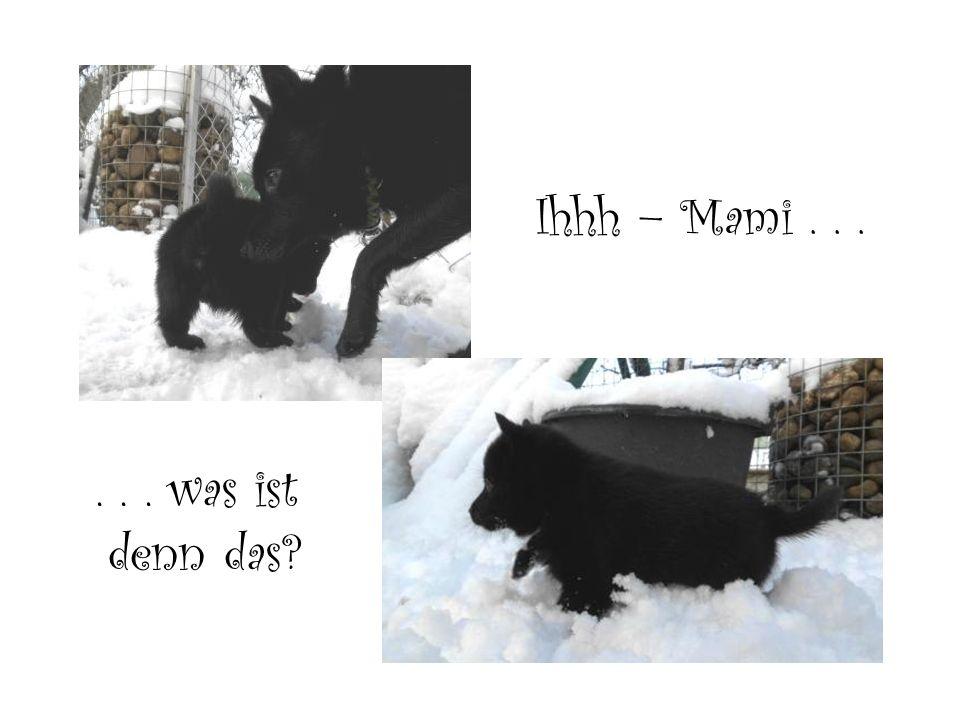 Ihhh – Mami...... was ist denn das?