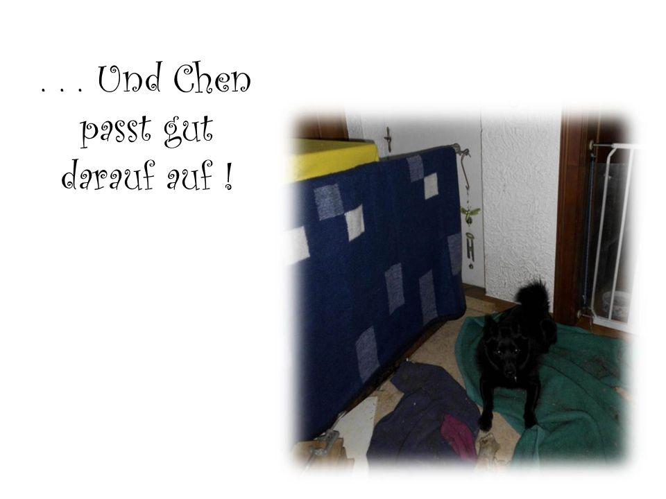 ... Und Chen passt gut darauf auf !