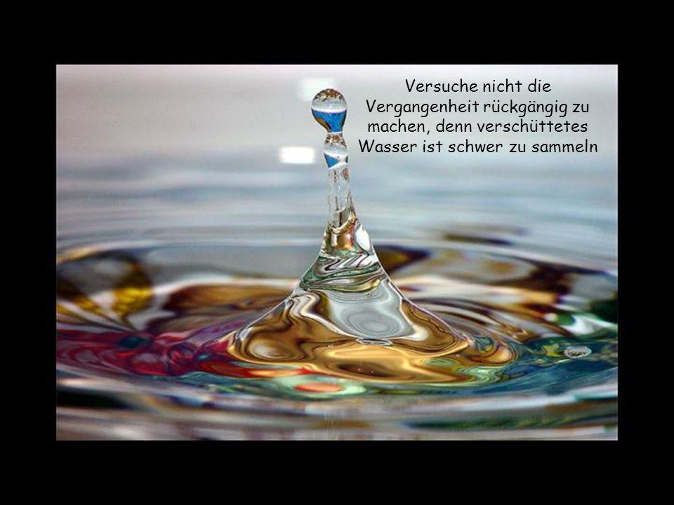 Versuche nie die Gefühle eines anderen zu verletzen, denn Gefühle sind aus Glas.