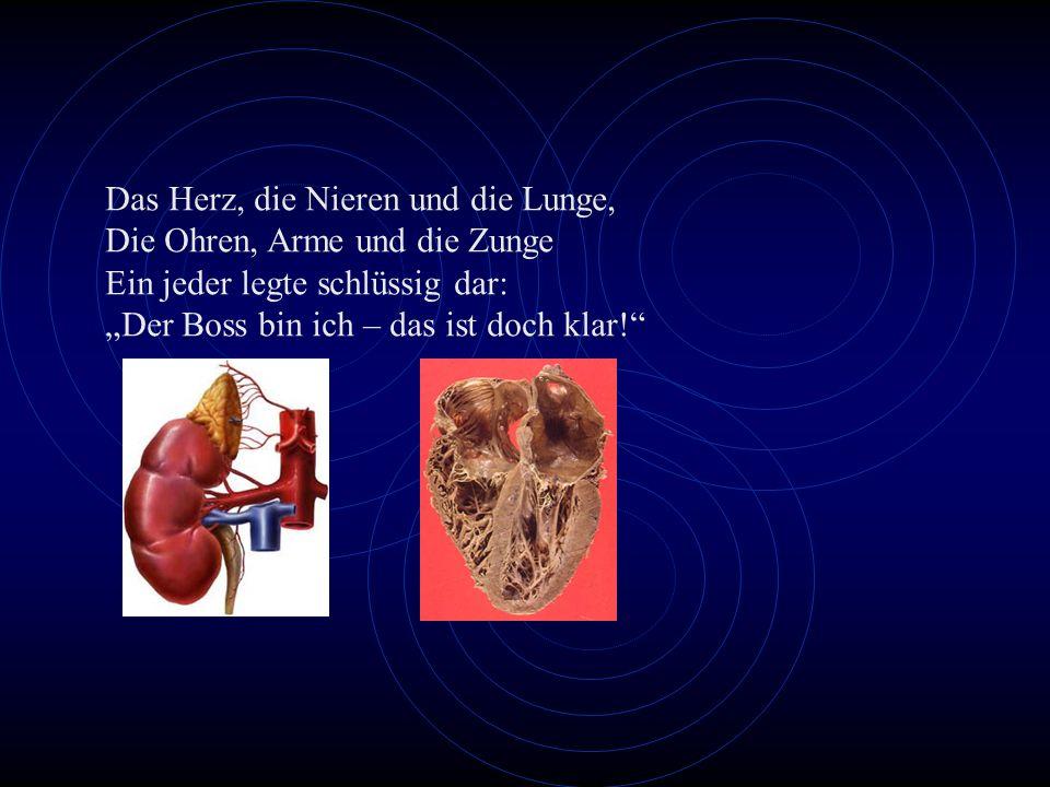 Das Herz, die Nieren und die Lunge, Die Ohren, Arme und die Zunge Ein jeder legte schlüssig dar: Der Boss bin ich – das ist doch klar!
