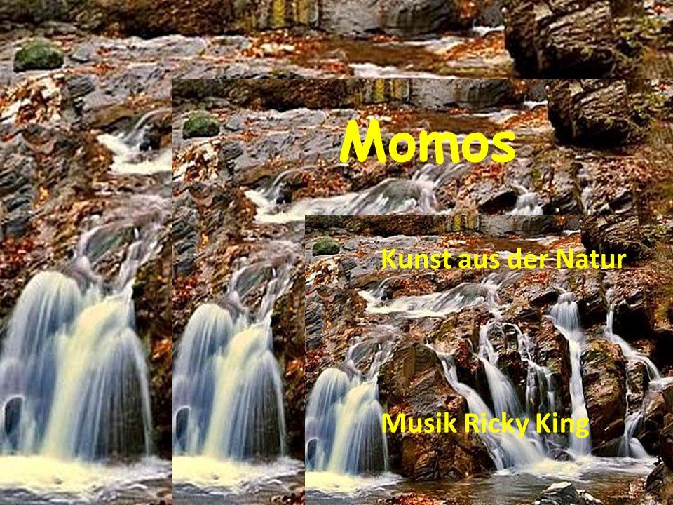Momos Musik Ricky King Kunst aus der Natur