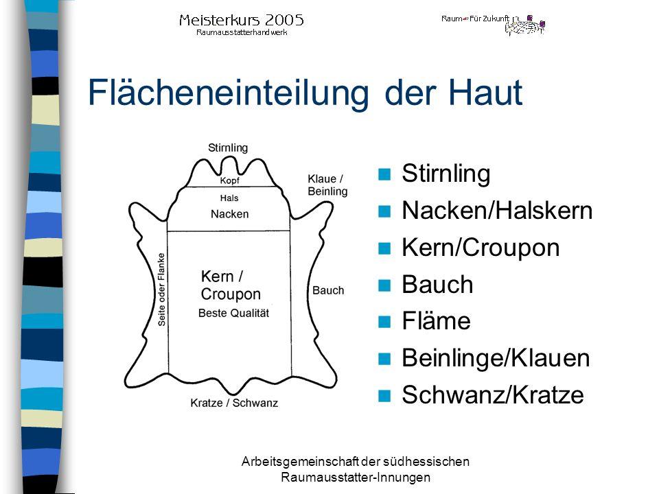 Arbeitsgemeinschaft der südhessischen Raumausstatter-Innungen Flächeneinteilung der Haut Stirnling Nacken/Halskern Kern/Croupon Bauch Fläme Beinlinge/