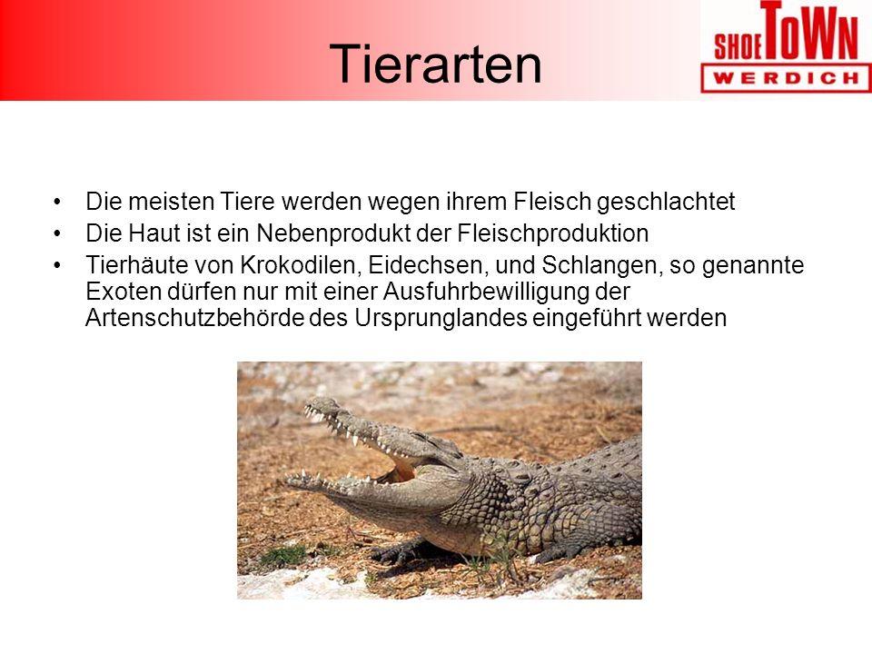 Tierarten Die meisten Tiere werden wegen ihrem Fleisch geschlachtet Die Haut ist ein Nebenprodukt der Fleischproduktion Tierhäute von Krokodilen, Eidechsen, und Schlangen, so genannte Exoten dürfen nur mit einer Ausfuhrbewilligung der Artenschutzbehörde des Ursprunglandes eingeführt werden