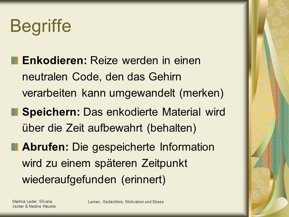 Martina Leder, Silvana Jecker & Nadine Häusler Lernen, Gedächtnis, Motivation und Stress Das Mehrspeichermodell von Akins & Shiffrin (1986)