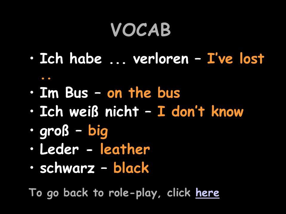 VOCAB Ich habe...verloren – Ive lost..