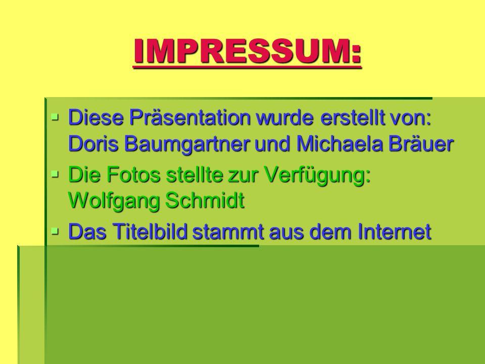 IMPRESSUM: Diese Präsentation wurde erstellt von: Doris Baumgartner und Michaela Bräuer Diese Präsentation wurde erstellt von: Doris Baumgartner und M