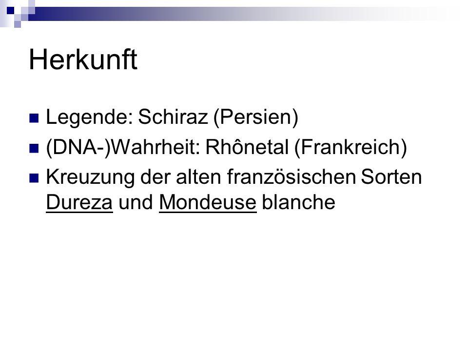 Herkunft Legende: Schiraz (Persien) (DNA-)Wahrheit: Rhônetal (Frankreich) Kreuzung der alten französischen Sorten Dureza und Mondeuse blanche