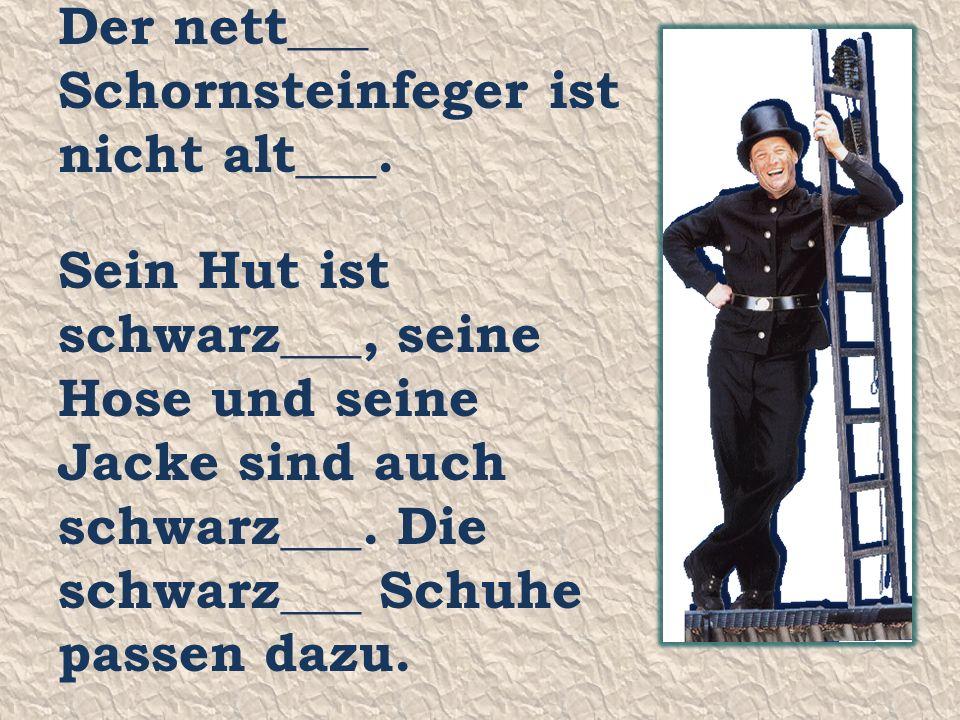 Der nett___ Schornsteinfeger ist nicht alt___.