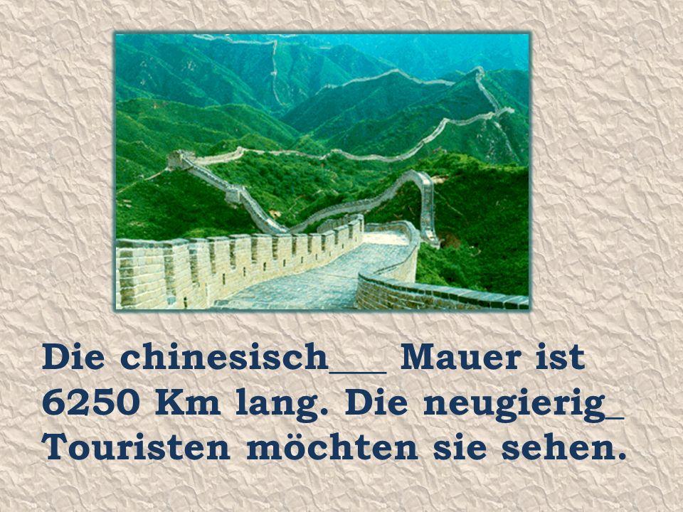 Die chinesisch___ Mauer ist 6250 Km lang. Die neugierig_ Touristen möchten sie sehen.