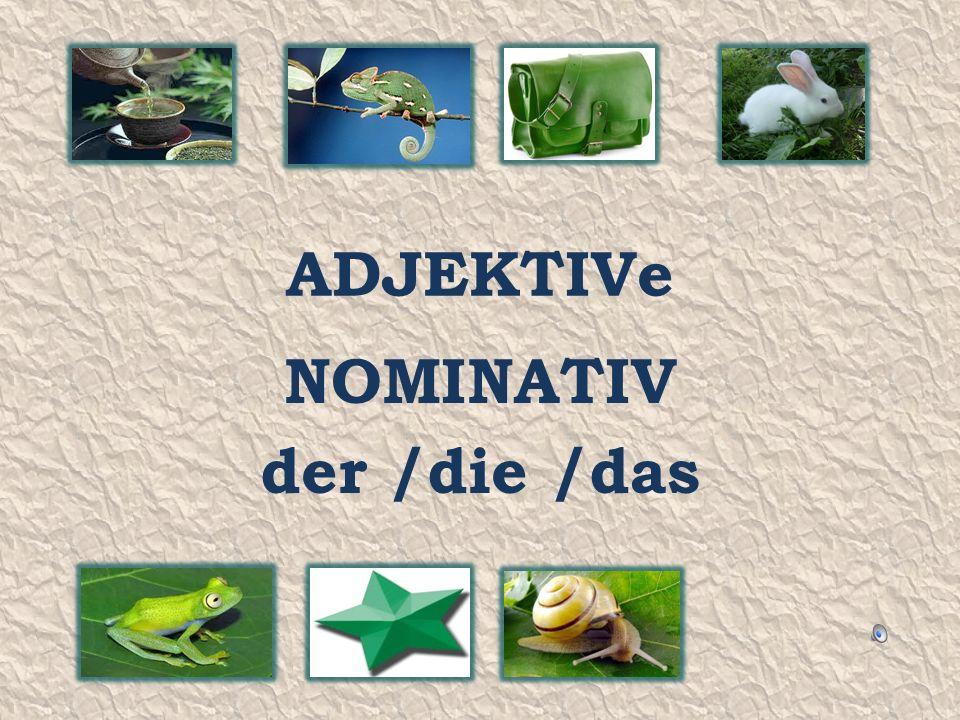 ADJEKTIVe NOMINATIV der /die /das