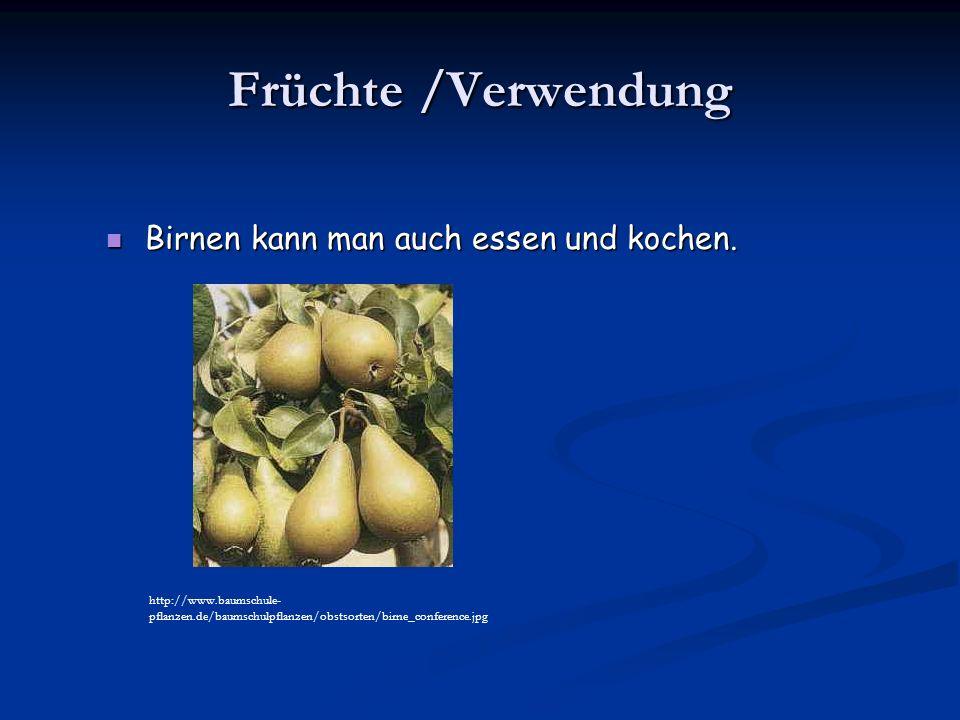 Früchte /Verwendung Birnen kann man auch essen und kochen.