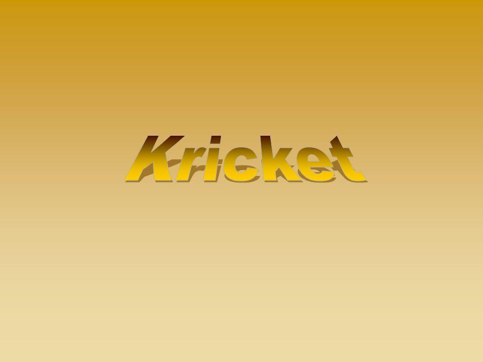 Kricket - Mannschaftssportarten, Spiele, bei denen zwischen zwei Mannschaften aus elf Spielern gespielt.