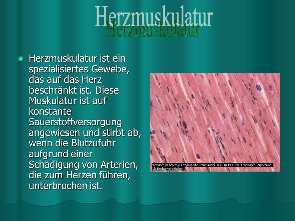 Bakterien verursachen das Verderben von Fleisch, Wein, Gemüse, Milch und Milchprodukten.