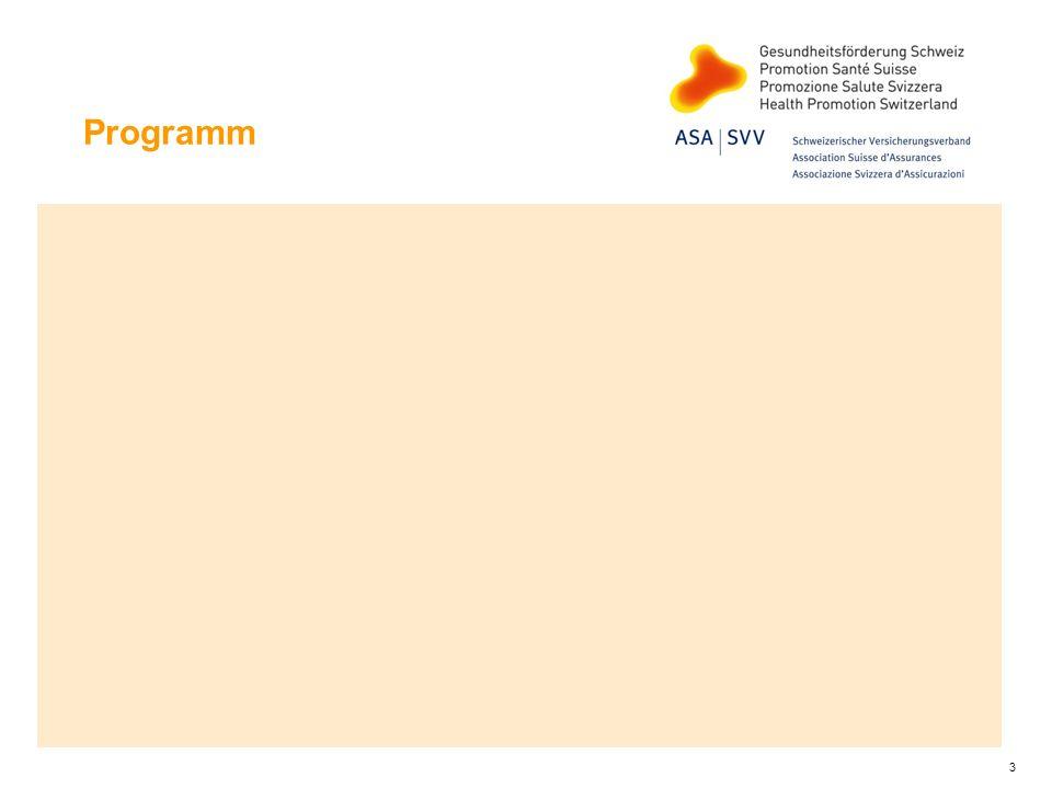 Auswirkungen der Stresspräventions- massnahmen Verbesserungen auf mehreren Ebenen Organisationale Rahmenbedingungen Arbeitsbedingungen: Arbeitsgestaltung und soziale Bedingungen Individuelle Verhaltensweisen und damit positive Wirkungen auf Gesunde und effiziente Arbeitsprozesse Gesundheit, Wohlbefinden, Arbeitszufriedenheit Leistungsfähigkeit, Leistungsbereitschaft, Motivation Individuelle Coping-Fähigkeiten Unternehmenskultur Image und Wettbewerbsfähigkeit der Betriebe 14