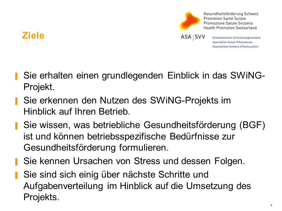 Ziele Sie erhalten einen grundlegenden Einblick in das SWiNG- Projekt.