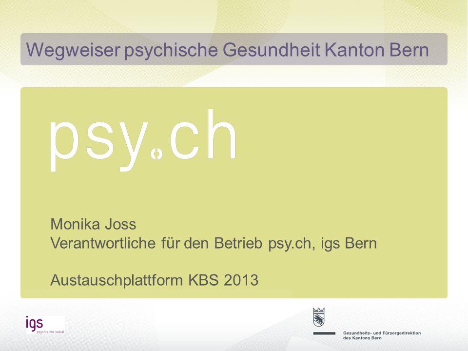 Wegweiser für psychische Gesundheit 2014 -Weitere Einträge generieren -Erweiterung der Website zu einer umfassenden Informationsplattform für die psychische Gesundheit Wie geht es weiter?