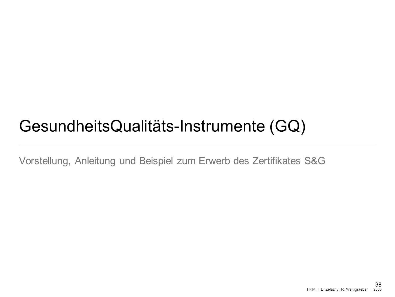GesundheitsQualitäts-Instrumente (GQ) Vorstellung, Anleitung und Beispiel zum Erwerb des Zertifikates S&G 38 HKM | B. Zelazny, R. Weißgraeber | 2006