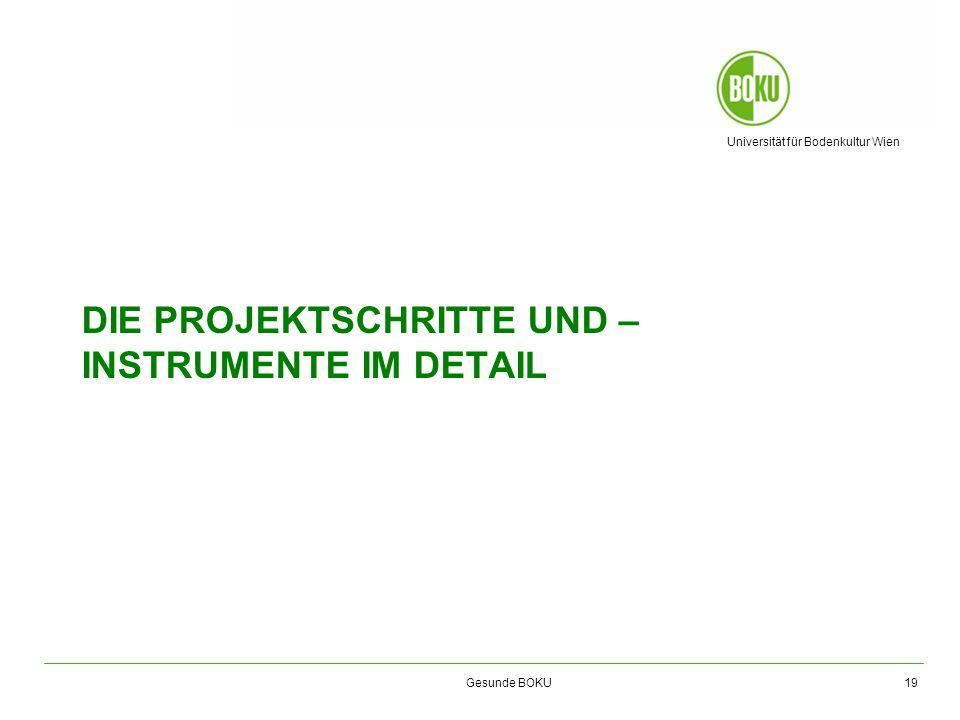 Universität für Bodenkultur Wien Gesunde BOKU DIE PROJEKTSCHRITTE UND – INSTRUMENTE IM DETAIL 19