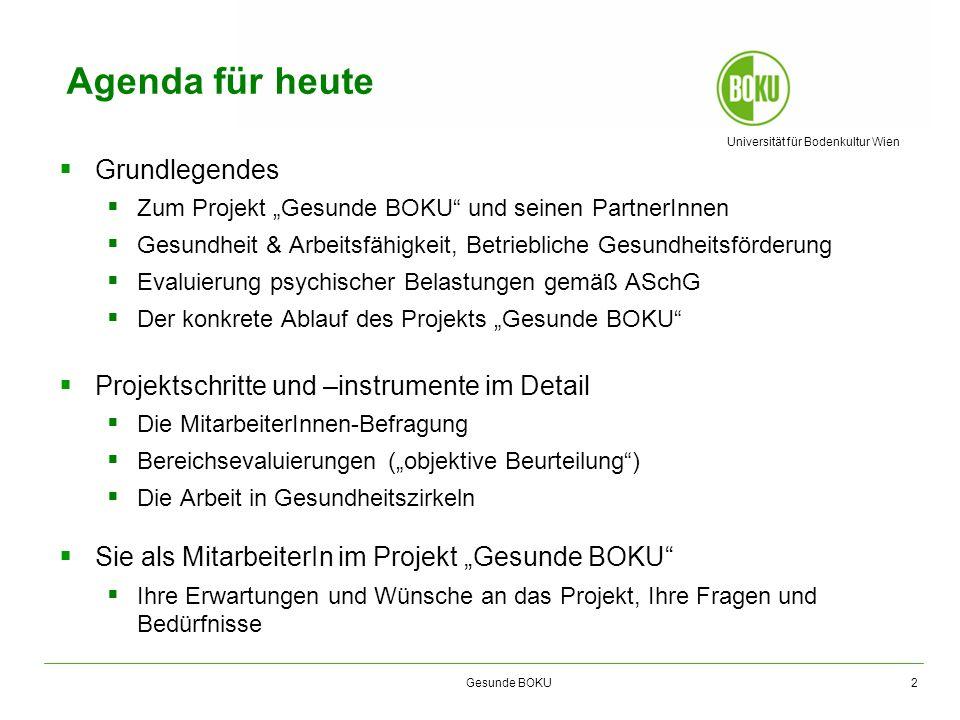 Universität für Bodenkultur Wien Gesunde BOKU Agenda für heute Grundlegendes Zum Projekt Gesunde BOKU und seinen PartnerInnen Gesundheit & Arbeitsfähi