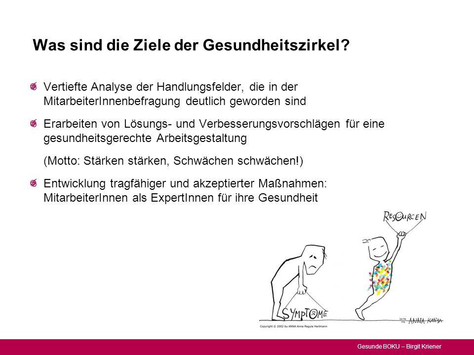Gesunde BOKU – Birgit Kriener Was sind die Ziele der Gesundheitszirkel? Vertiefte Analyse der Handlungsfelder, die in der MitarbeiterInnenbefragung de