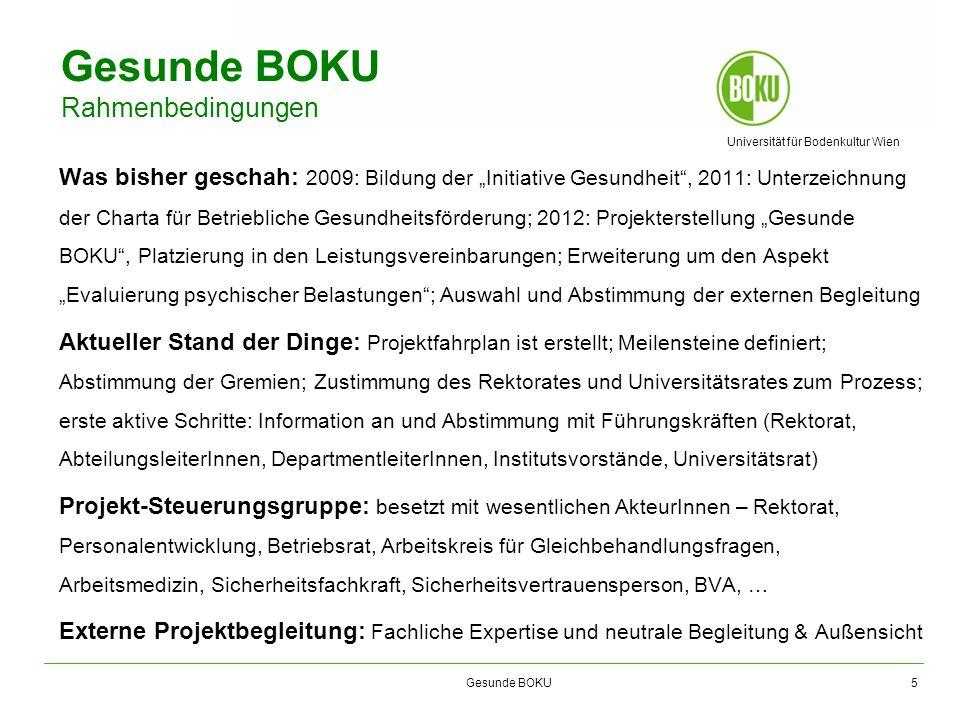 Universität für Bodenkultur Wien Gesunde BOKU Gesunde BOKU Rahmenbedingungen Was bisher geschah: 2009: Bildung der Initiative Gesundheit, 2011: Unterz